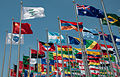 Expo-Flags.jpg