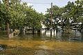 FEMA - 30912 - Flooding in Texas.jpg