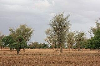 Nord Region (Burkina Faso) Region of Burkina Faso