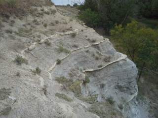 Carlile Shale A geologic formation in the western US