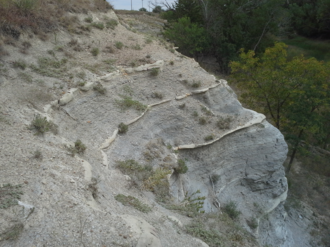 Carlile Formation - Rare exposure of the Fairport Chalk member of the Carlile Shale in southern Ellis County, Kansas