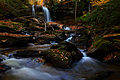 Fall-foliage-waterfall-wallpaper - West Virginia - ForestWander.jpg