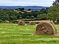 Farley - panoramio.jpg