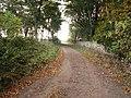 Farm track and wall at Kilconquhar - geograph.org.uk - 62524.jpg