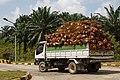 Felda-Sahabat Cenderawasih Sabah Kilang-Sawit-Fajar-Harapan-02.jpg