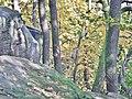 Felsenmeer, steinernes Meer im Naturpark und Biosphärenreservat Pfälzerwald - panoramio (4).jpg