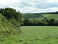 Field east of West Sandford, but west of Sandford - geograph.org.uk - 1393668.jpg