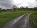 Fields west of Gilfachydwn Fawr farm - geograph.org.uk - 673587.jpg