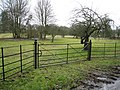 Fine iron gate - geograph.org.uk - 1730769.jpg