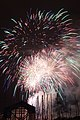 Fireworks - July 4, 2010 (4773752116).jpg