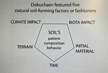 V v dokuchaev central museum of soil wikipedia for Soil forming factors