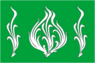 Flag of Belousovo (Kaluga oblast).png