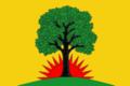 Flag of Pavlovskoe (Ryazan oblast).png