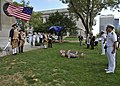 Flickr - Official U.S. Navy Imagery - Navy officers salute the national ensign..jpg