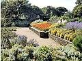 Flower Gardens - Tynemouth Park - geograph.org.uk - 522024.jpg