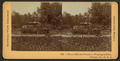 Flower bed and fountain, Washington Park, Chicago, Ill. U.S.A, by Keystone View Company.png