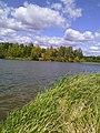 Fokinskiy rayon, Bryansk, Bryanskaya oblast', Russia - panoramio (118).jpg