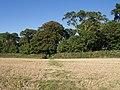 Footpath near Hill Farm - geograph.org.uk - 546266.jpg