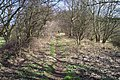 Footpath to Red Moor - geograph.org.uk - 185236.jpg