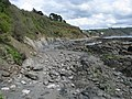 Foreshore east of Looe beach - geograph.org.uk - 1838422.jpg