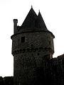 Fougères (35) Château Tour du Hallay 06.JPG