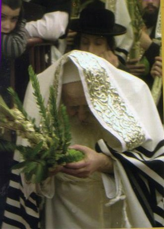 Psalm 113 - The Tosher Rebbe of Montreal, Quebec, Canada shaking the Four species during Sukkot while praying Hallel.