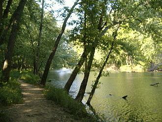 Fourteen Mile Creek - Image: Fourteen Mile Creek mouth upstream
