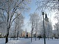 Franzeninpuisto Oulu 20090215 P1040140 (8447800636).jpg