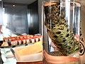 Fresh wasabi at NoMI (32580254330).jpg
