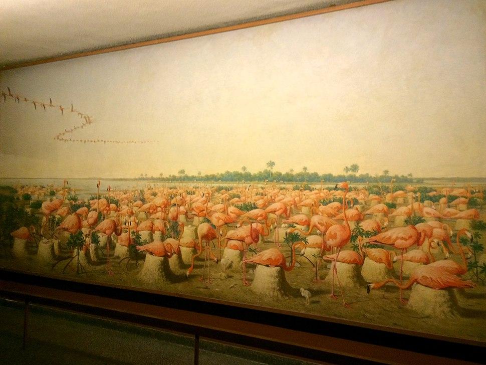 Fuertes Flamingo Mural