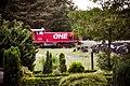 Güterzug der OHE bei Benzen - panoramio.jpg