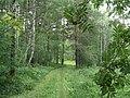 G. Miass, Chelyabinskaya oblast', Russia - panoramio (51).jpg