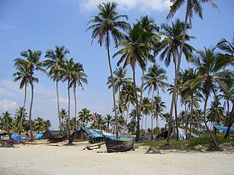 Coconut palm trees are a ubiquitous symbol of Goa GOA Colva Beach - panoramio.jpg