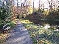 Gala Policies ( Pond) - panoramio - Ian Turnbull.jpg