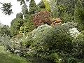Gardens at Hinton Admiral House - geograph.org.uk - 344447.jpg