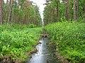 Garkalnes novads, Latvia - panoramio (26).jpg