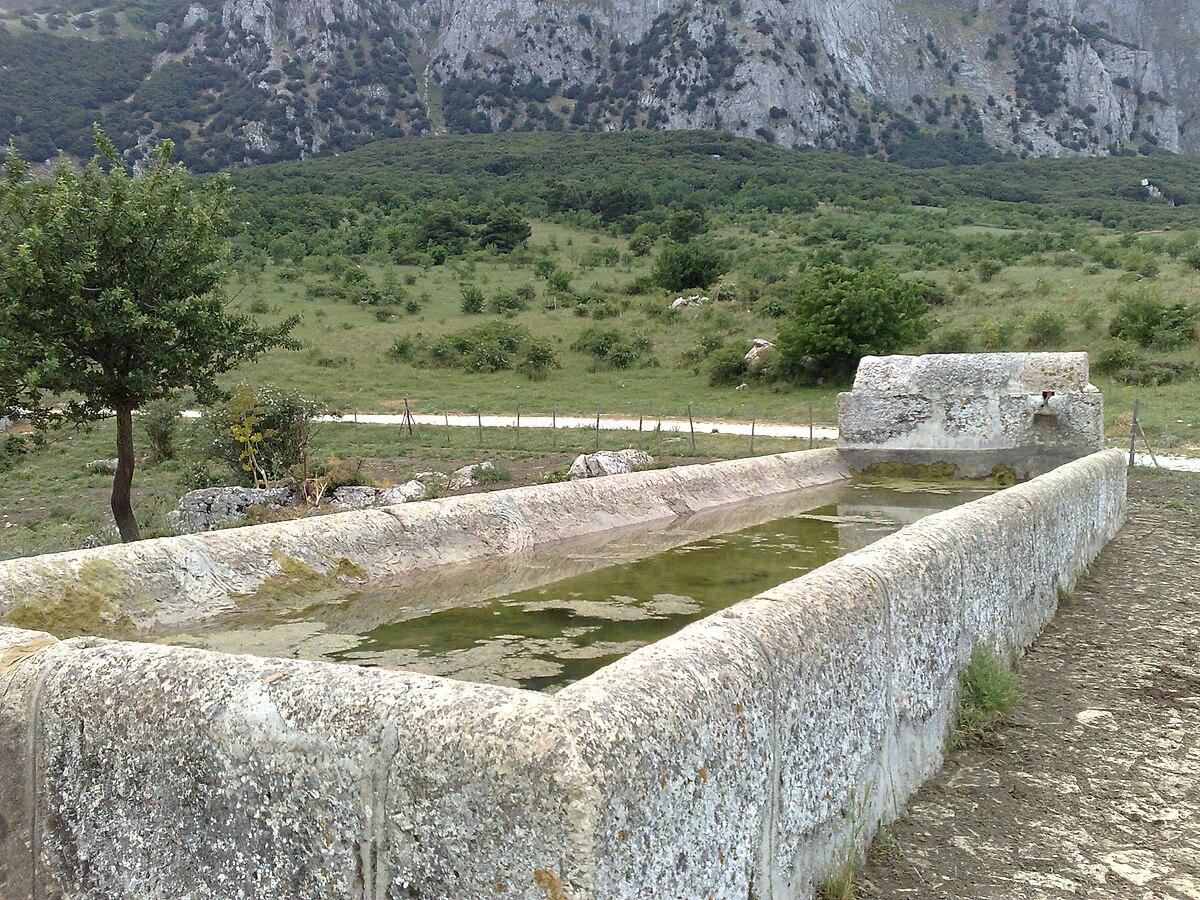 Abbeveratoio wikipedia - Immagini di giardini di villette ...