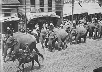 "Geneseo, Illinois - ""When the circus came to town."" Downtown Geneseo, Illinois circa 1890"