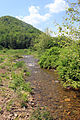 Gfp-pennsylvania-sinnemahoning-state-park-creek-view.jpg