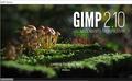 Gimp 1.png