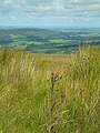 Girvan Valley From Craig Hill - geograph.org.uk - 506299.jpg