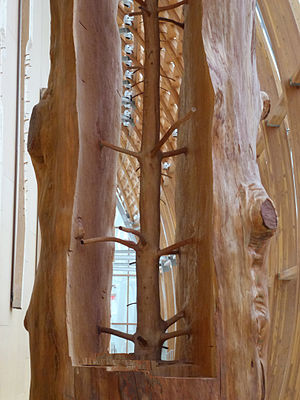 Giuseppe Penone - Penone's The Hidden Life Within