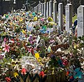 Glasnevin Cemetery (442794767).jpg