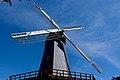 Golden Gate Park - Murphy Windmill - March 2018 (1660).jpg