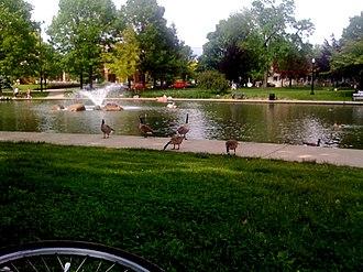 Goodale Park - Geese at Goodale Park
