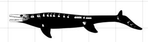 Goronyosaurus - Diagram of the known remains of Goronyosaurus