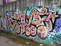 Graffiti nel quartiere La Rustica 24.jpg