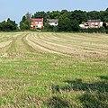 Grass field near Prestwood, Staffordshire - geograph.org.uk - 979494.jpg