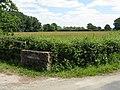 Grassland at Sansome Farm - geograph.org.uk - 838982.jpg