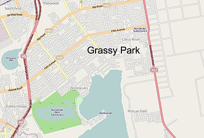 How to get to Grassy Park with public transport- About the place